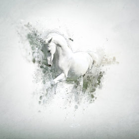 Bild Veranstaltung: Große Pferdegala