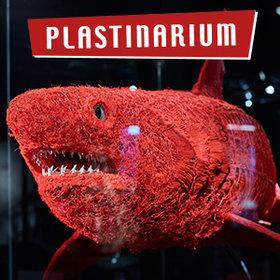 Image: Plastinarium Guben
