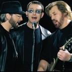 Bild Veranstaltung: The Australian Bee Gees Show