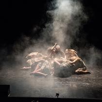 Bild: New Dance Academy