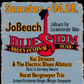 Bild: Hildesheim Blues Festival