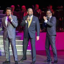 Bild Veranstaltung Sinatra & Friends