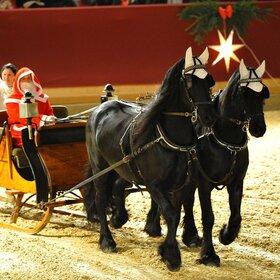 Image Event: Neustädter Weihnachtsgala