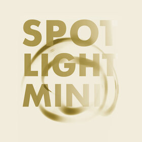 Image: Spotlight-Mini