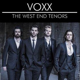 Image Event: VOXX