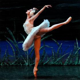 Bild: Klassisches Russisches Ballett - Schwanensee
