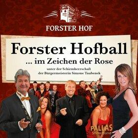 Image: Forster Hofball