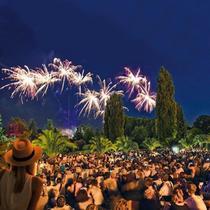 Bild Veranstaltung Botanische Nacht
