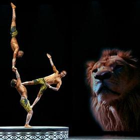 Image: AFRIKA! AFRIKA!