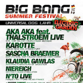 Image: Big Bang Summer Festival