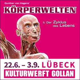 Image Event: KÖRPERWELTEN Lübeck - Zyklus des Lebens