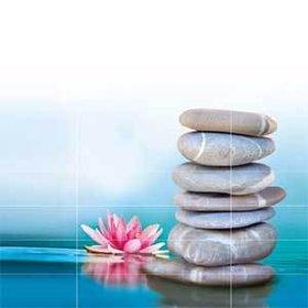 Bild: Balance - Die Messe für Gesundheit und Lebensqualität