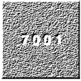 Image: 7001 Festival