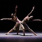 Bild Veranstaltung: Malandain Ballet Biarritz