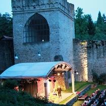 Bild Veranstaltung Burgfestspiele Wiesbaden  2016
