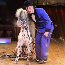 Bild Veranstaltung Circus Krone