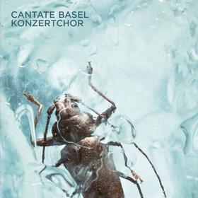 Image: Cantate Basel Konzertchor