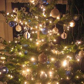 Bild Veranstaltung: Öffentliche Weihnachtsfahrt