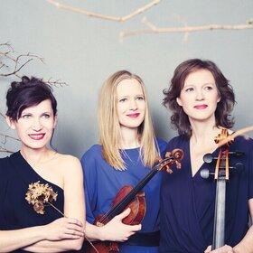 Image: Boulanger Trio