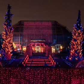 Image Event: Christmas Garden