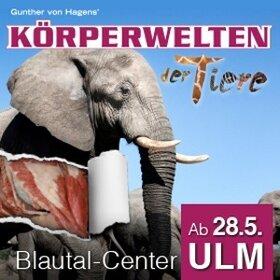 Image: KÖRPERWELTEN der Tiere Ulm