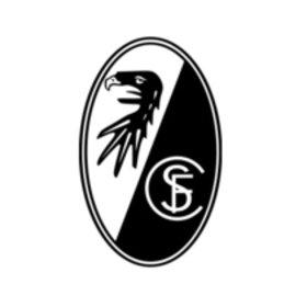 Image: Freundschaftsspiel SC Freiburg – FC Winterthur