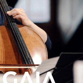 Image: GAIA Musikfestival Oberhofen