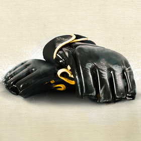 Image: Mixed Martial Arts (MMA) - Event Series
