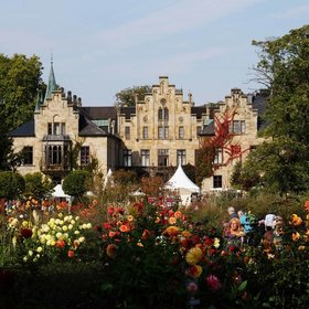 Bild Veranstaltung: Großes Ippenburger Herbstfestival