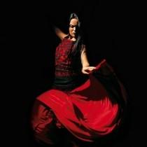 Bild: Compa��a flamenca Antonio Andrade
