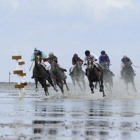 Bild Veranstaltung: Duhner Wattrennen