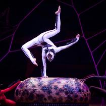 Bild: Cirque du Soleil