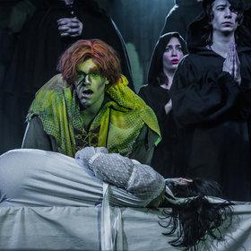 Bild: Der Glöckner von Notre Dame - Das Musical