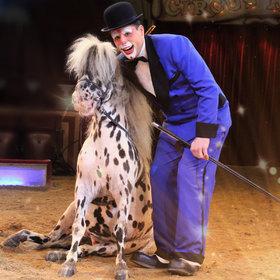 Bild: Circus Krone