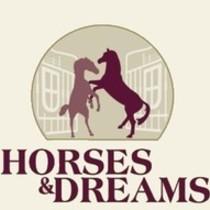 Bild Veranstaltung Horses & Dreams