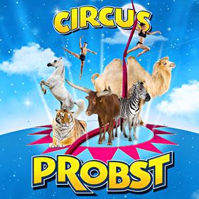 Bild: Circus Probst - Brandenburg a.d.H.