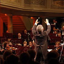 Bild Veranstaltung Brandenburgisches Staatsorchester Frankfurt