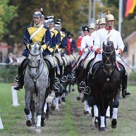 Image Event: Neustädter Hengstparade
