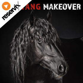 Image: Mustang Makeover