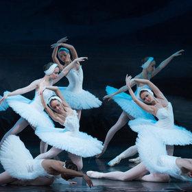 Bild Veranstaltung: Schwanensee - Russisches Ballettfestival Moskau