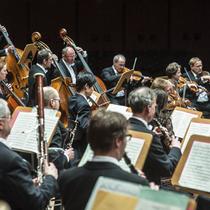 Bild: 23. Marienberger Pfingstkonzert - Staatsorchester Braunschweig