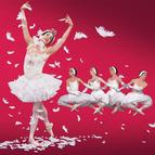 Bild Veranstaltung: Les Ballets Trockadero de Monte Carlo