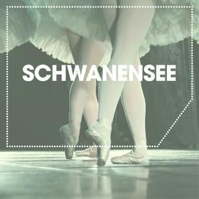 Image: Schwanensee