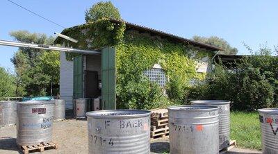 Traubenannahmestelle WG Bischoffingen-Endingen